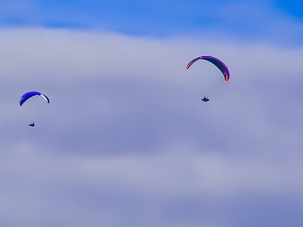 PICT1431 Paragliders
