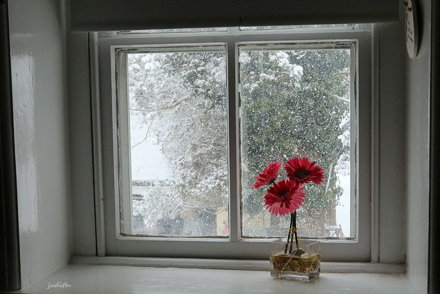 snow again today