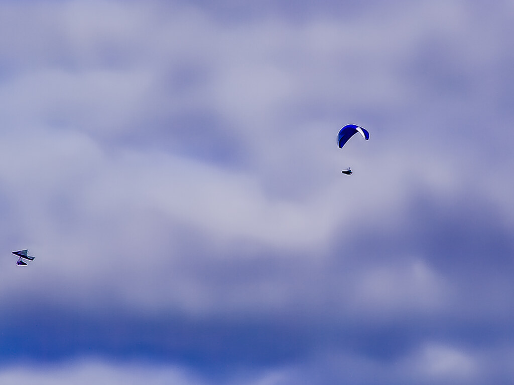 PICT1430 Paragliders
