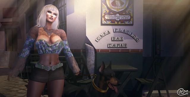 Meet you at the Casa Placido Bar