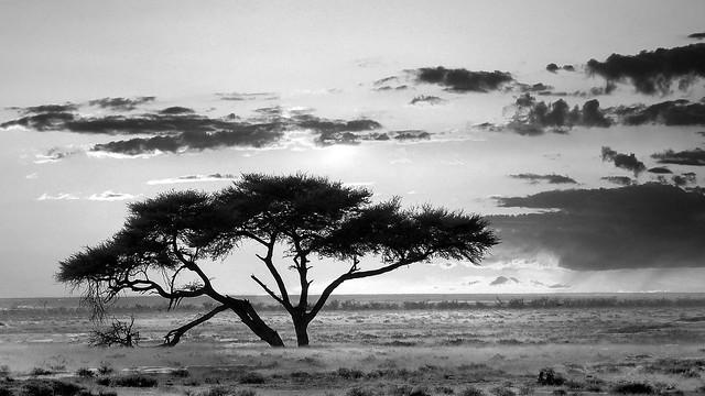 Un soir sur la terre - Namibie