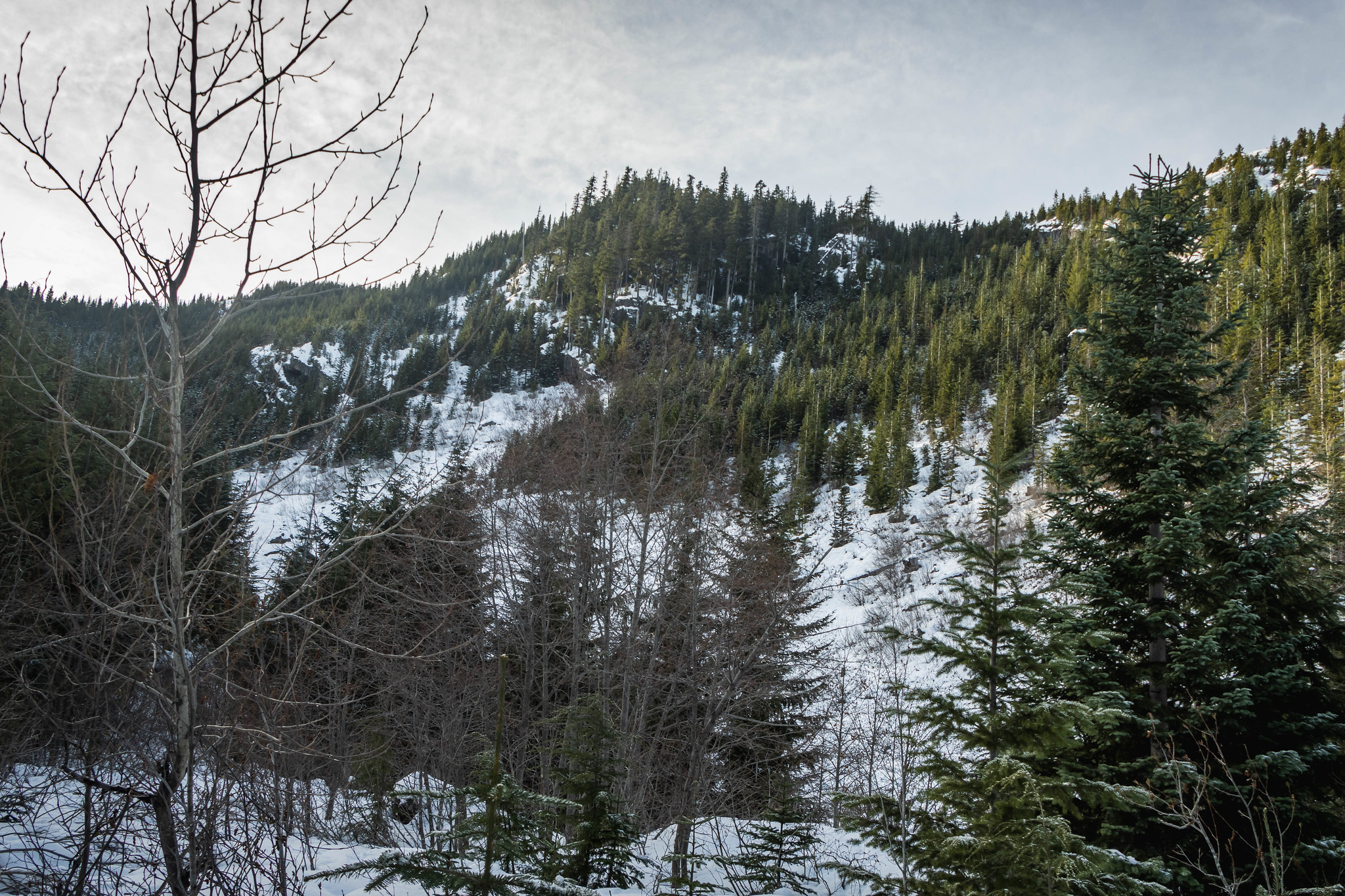 Greenway Mountain's farewell