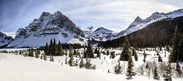 Crowfoot Mountain From Icefields parkway