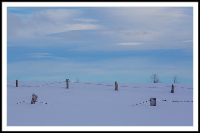 Winter dreams...-2