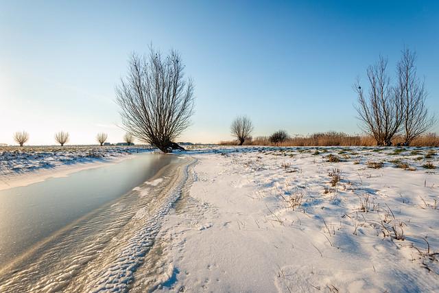 Wide winter landscape in the Netherlands