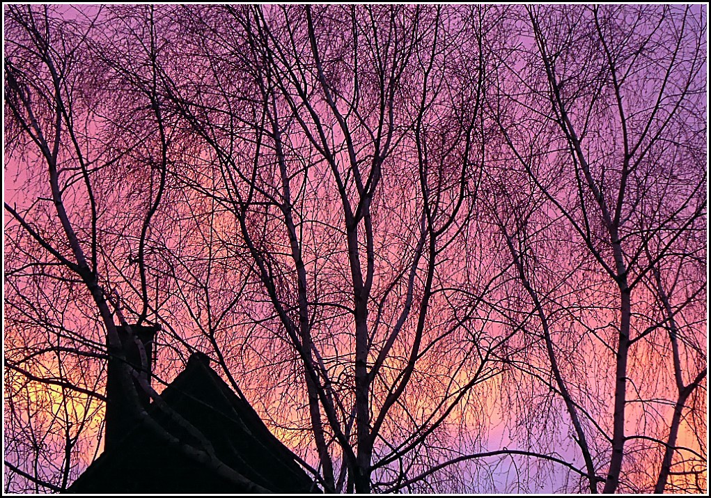 Early Dawn ..
