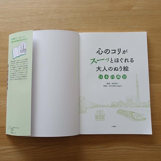 永岡書店「心のコリがスーッとほぐれる大人のぬり絵 日本の風景」