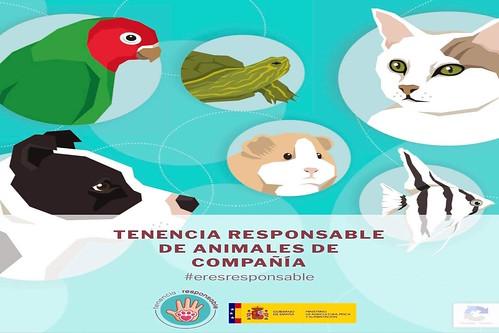 Cartel de la Campaña de Tenencia Responsable de Animales de Compañía
