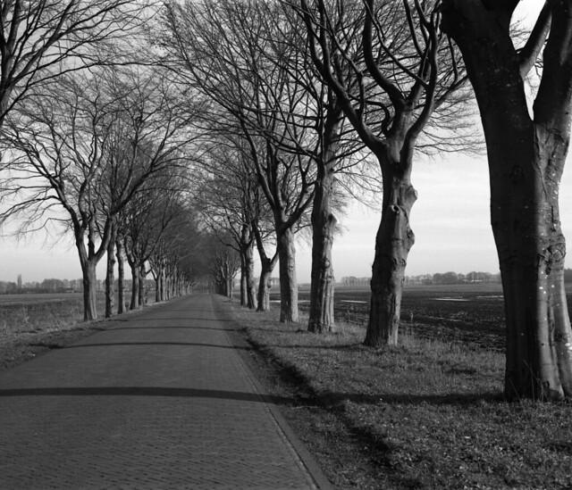 Valtherdijk