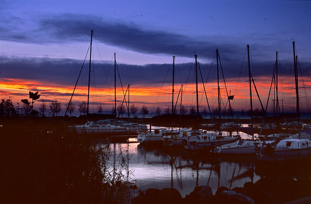Marina after Sunset