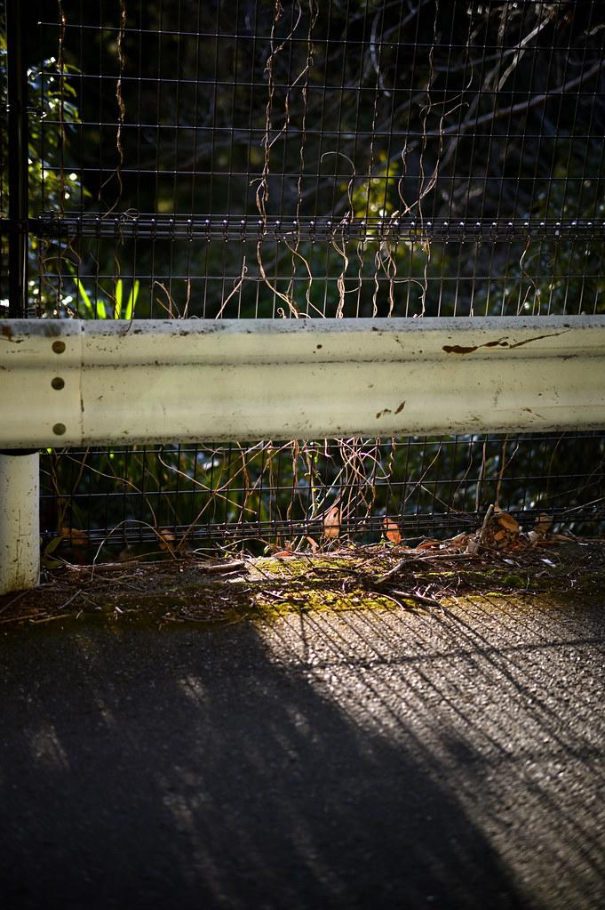 NZ6_1086