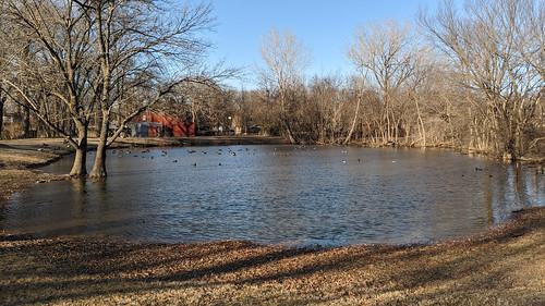 googlepixel3 landscape cameraphone pond trees bluesky nightsight ducks