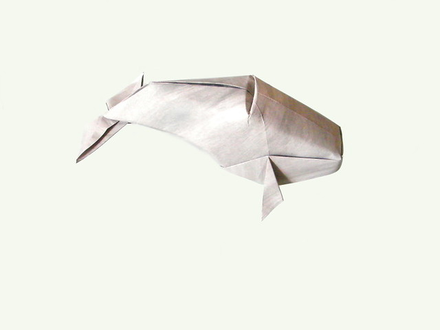 Gray Whale - Kade Chan