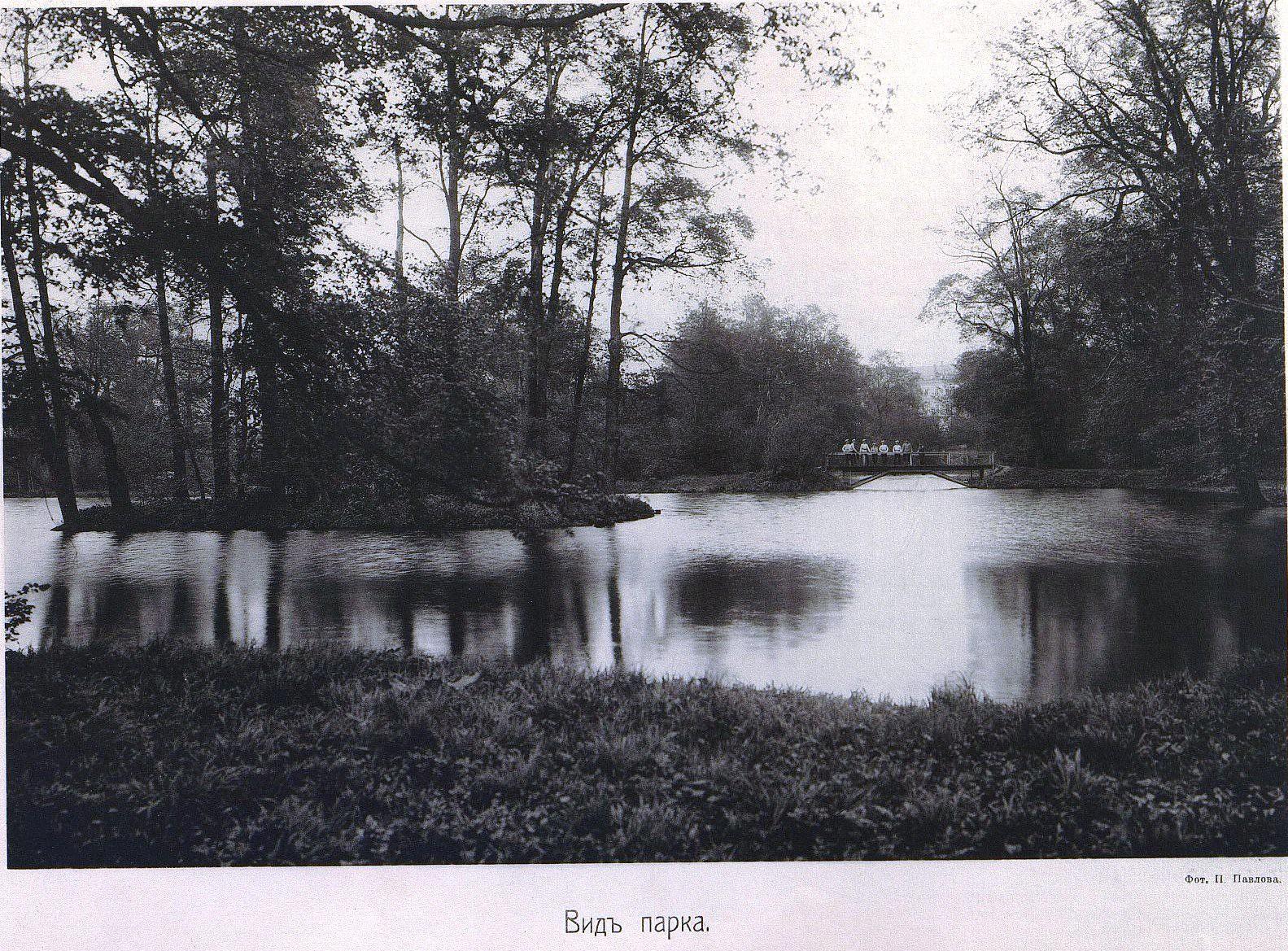 46. Вид парка
