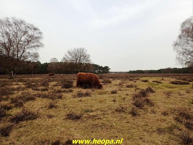 2021-02-22   Bussum-Baarn    Westerborkpad   (33)