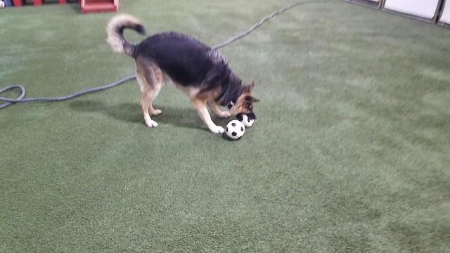 02-23-21 Soccer! :)