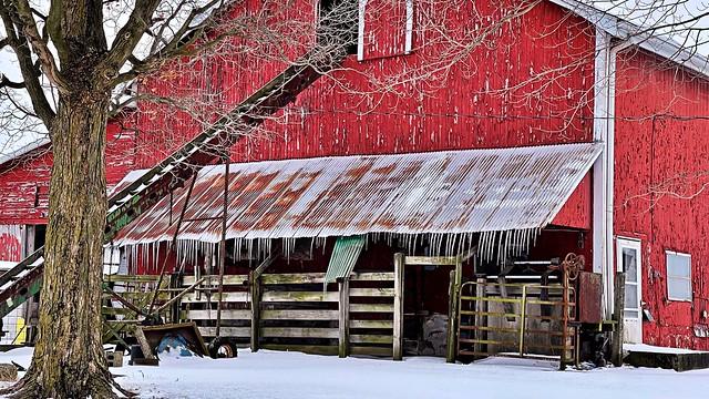 Wonders of Winter #53