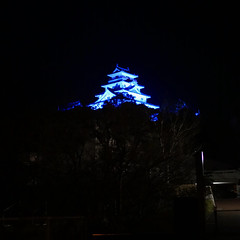 Karatsu castle lit up blue in solidarity with medical workers