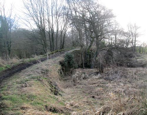 Curved Path to Barrel Brig, Fife