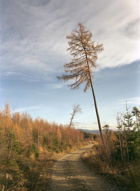 Beskidy Mountains, Poland.