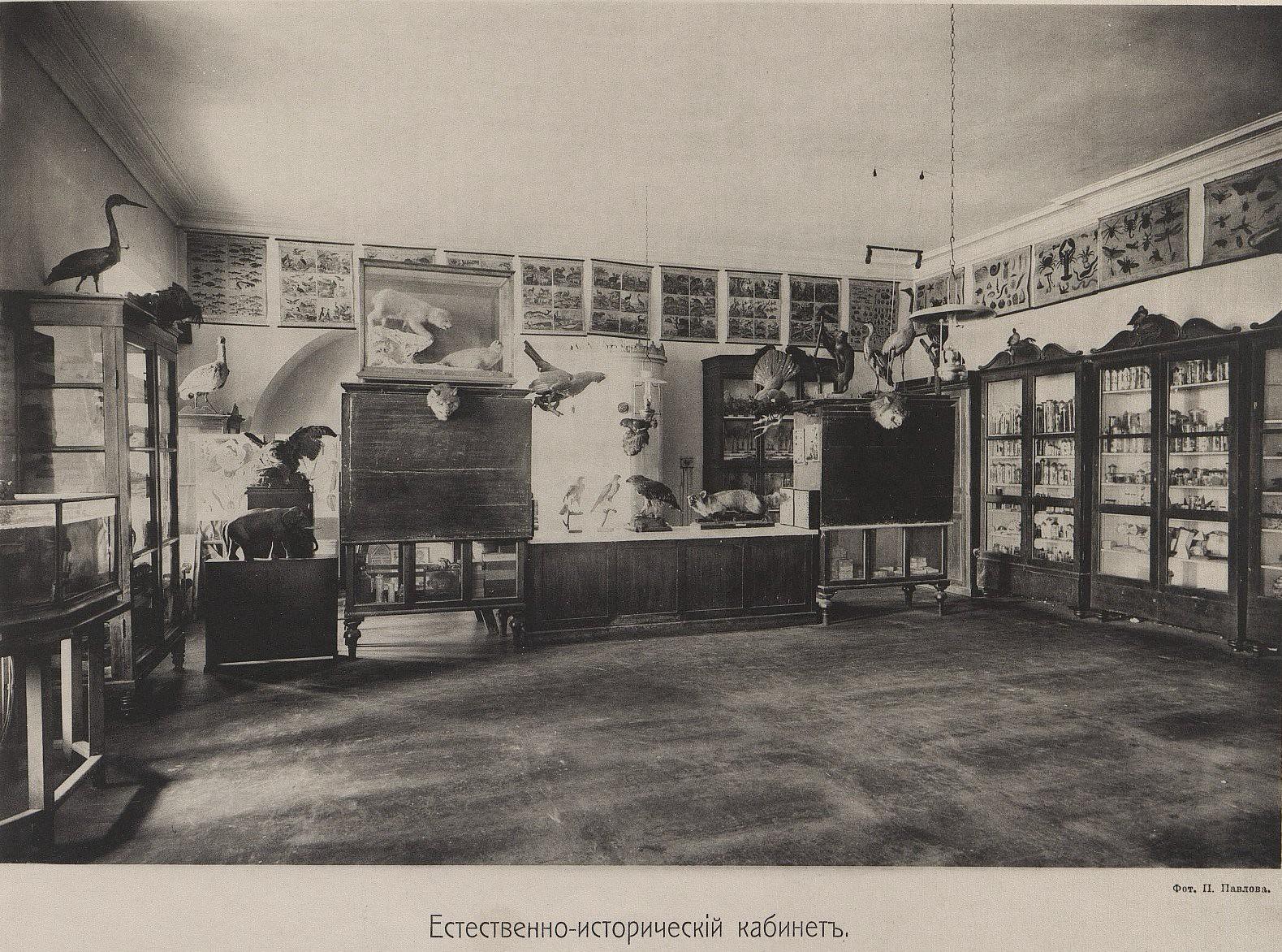 35. Естественно-исторический кабинет