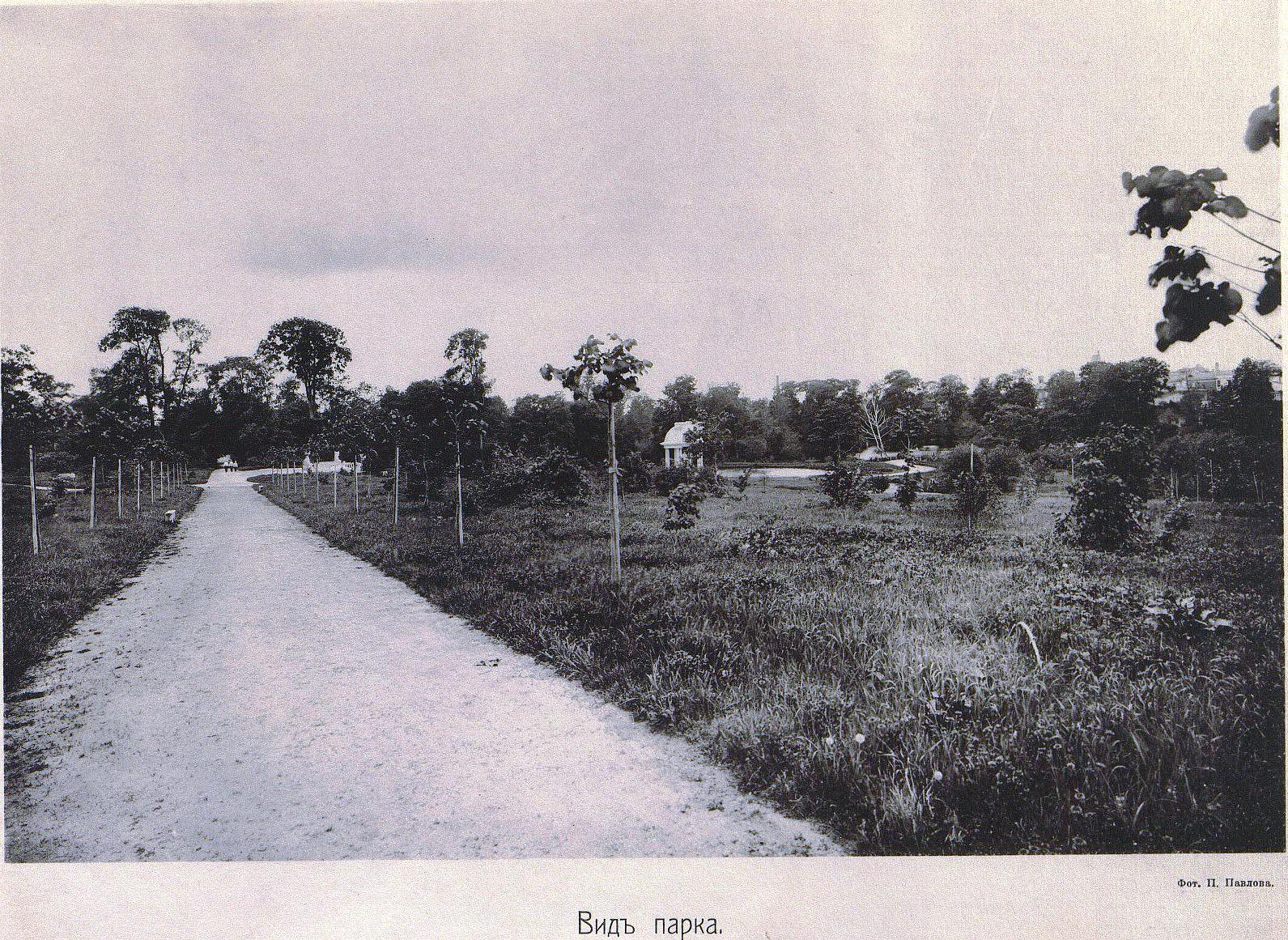 45. Вид парка