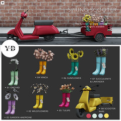 {YD} Spring Scooter