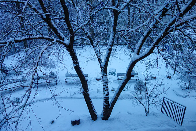 Last snow standing