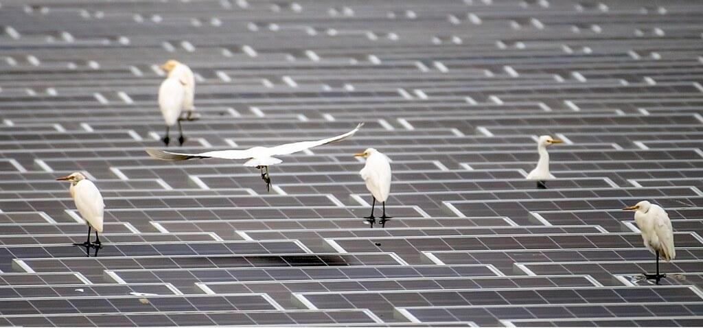 辰亞能源提供