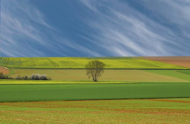 Aulnay sur Mauldre, les Beauchards.
