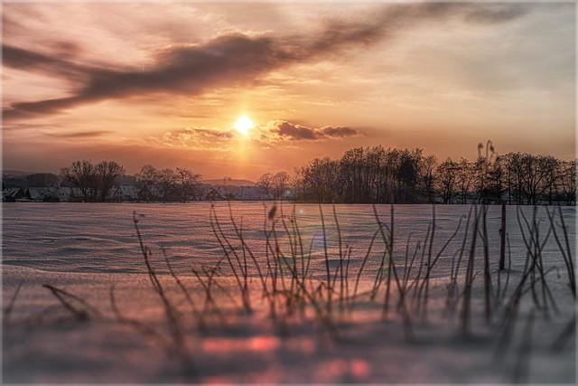 Schneefeld in der Abendsonne