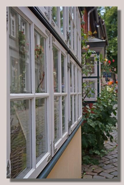 Window / HWW