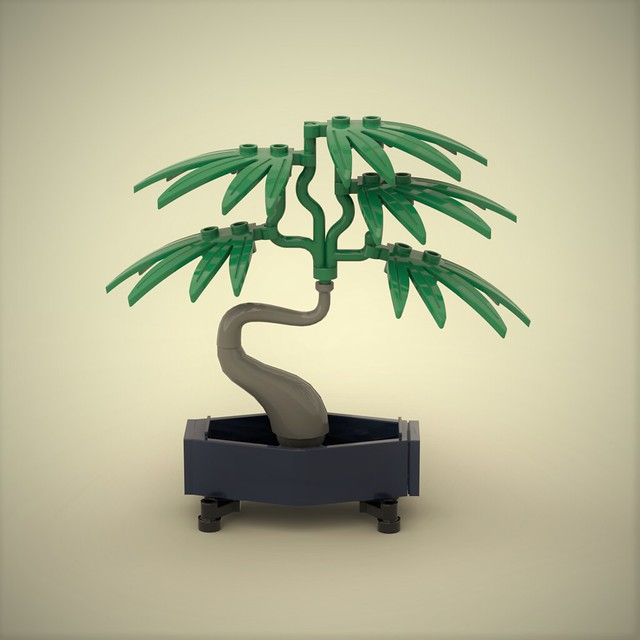 Palm Bonsai