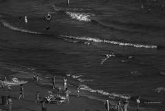 2014-08 Estate Vita di spiaggia 1