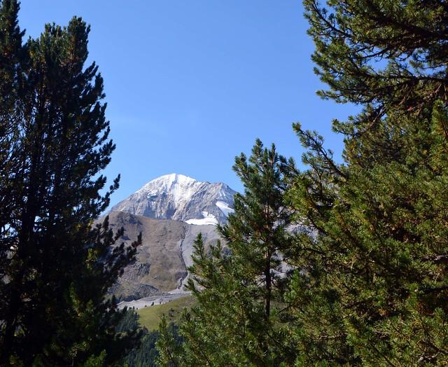 Nel bosco: la montagna