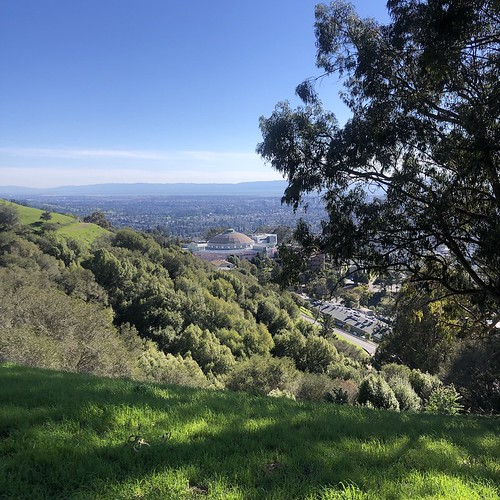 Up in the Hills