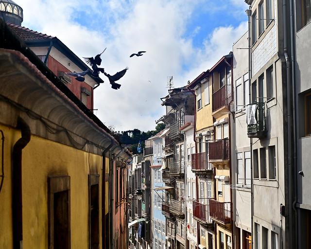 Rua de Tomás Gonzaga