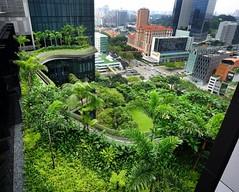 pianta della città
