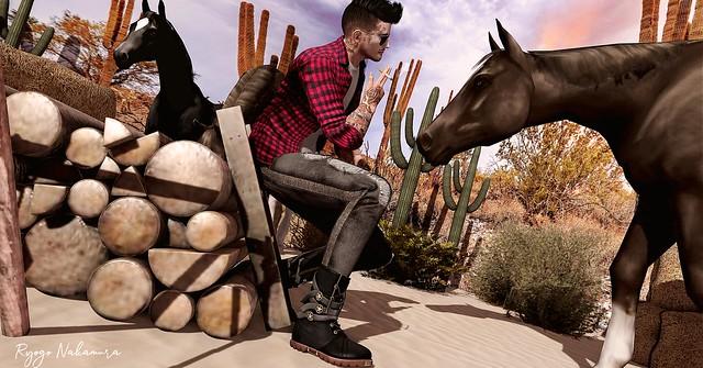 #213 Wow Cowboy :D