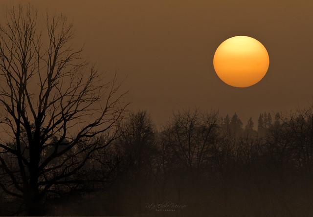 Sahara-dust sunset (Watch full size to see the sunspots)