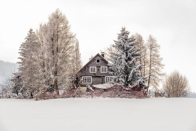 abandoned house - winter
