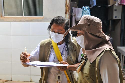 Τα κρούσματα δάγκειου πυρετού μειώθηκαν κατά 66% στο DF