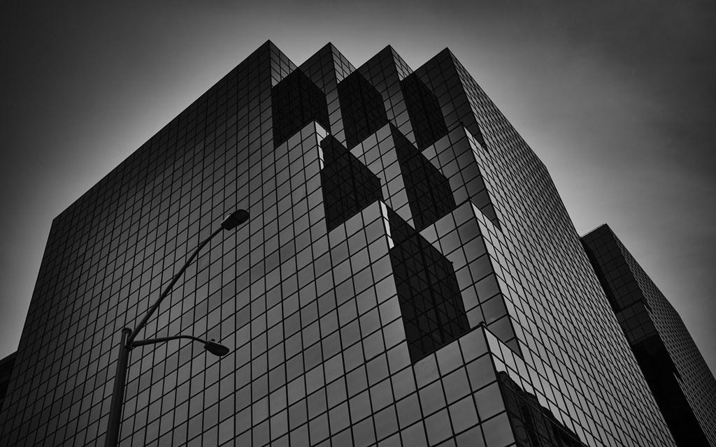 55/365 : Always look up