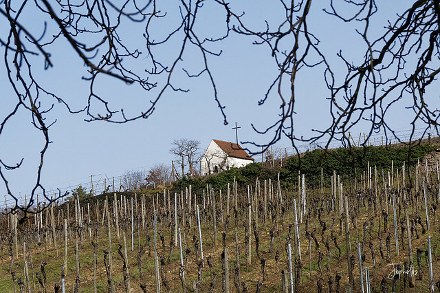 La chapelle du Bollenberg à Orschwihr dans le 68