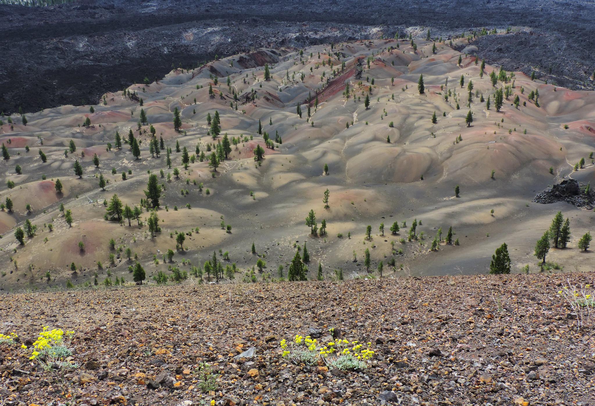 Cinder Cone Trail, Lassen Volcanic National Park, CA, USA