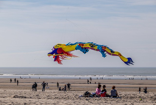 Kite at the beach