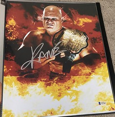 Professional Wrestling Single Autographed 11x14 Photos