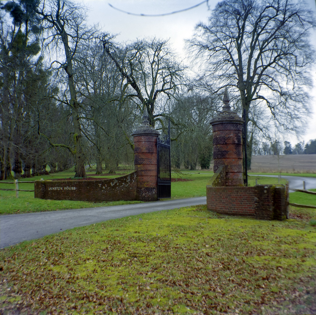 gates of Lainston House Trees, Solida Ektar 100