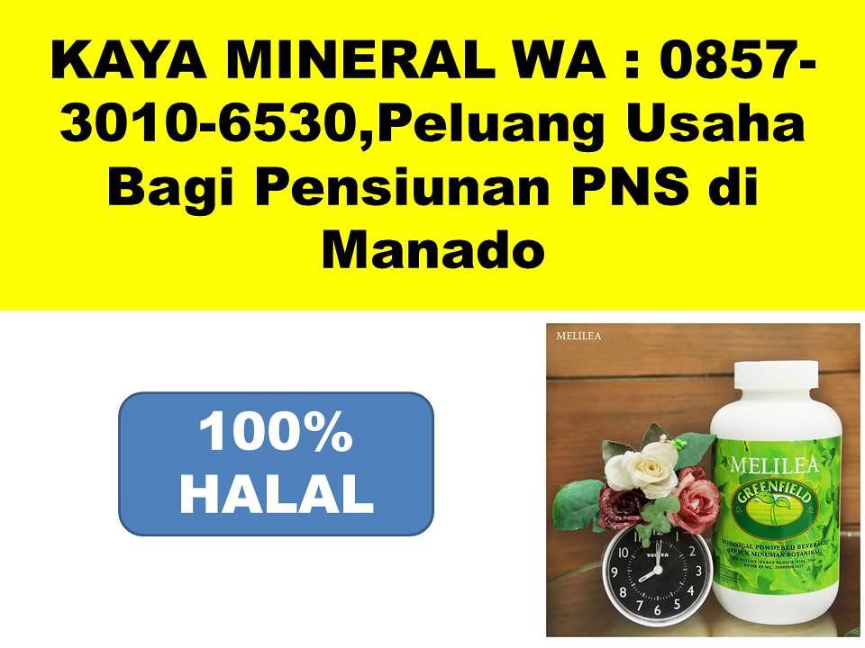 KAYA MINERAL WA  0857-3010-6530,Peluang Usaha Bagi Pensiunan PNS di Manado
