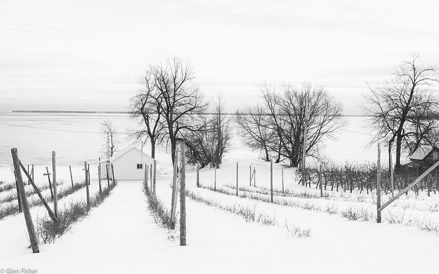 The Farm on the Lake, Prince Edward County
